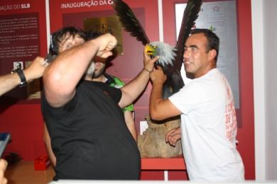 Sportinguistas a tentar agredir a Águia - kkk